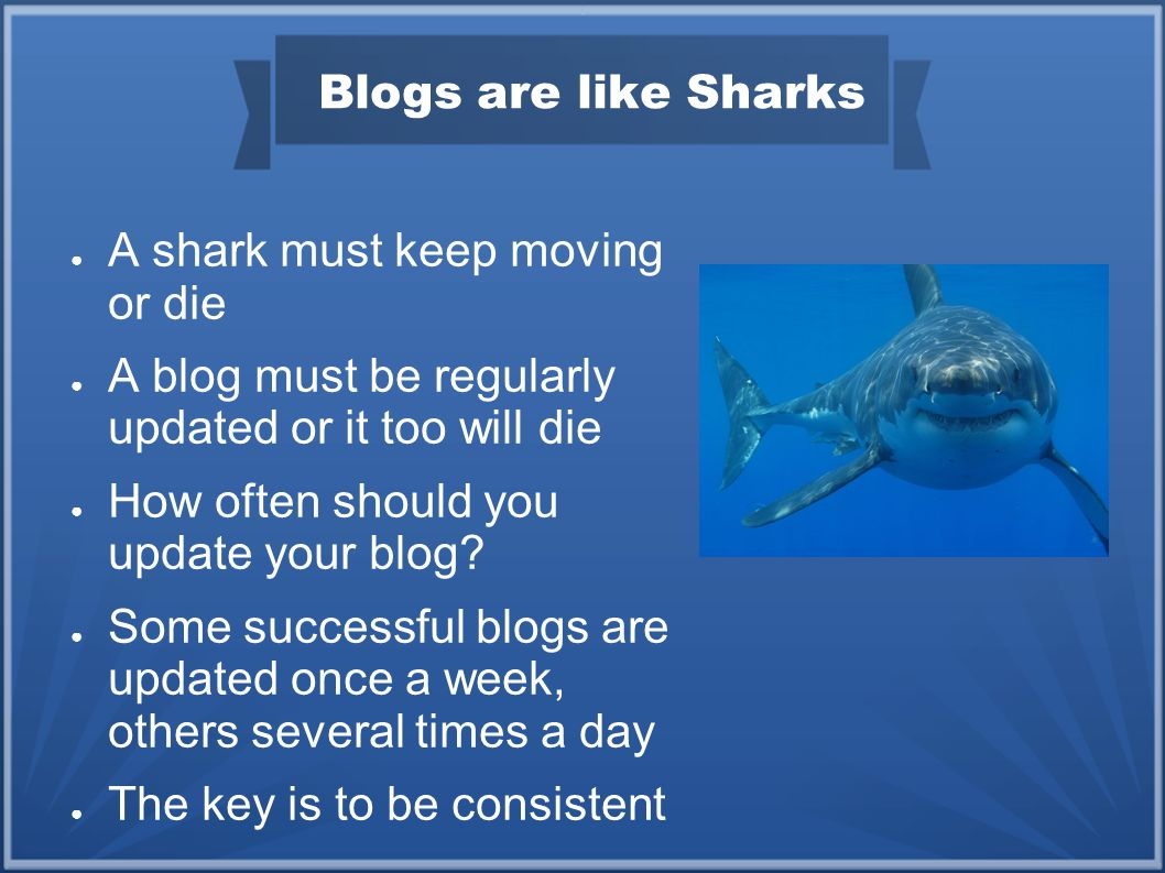 Blogs are like Sharks A shark must keep moving or die A blog must be regularly updated or it too will die How often should you update your blog.