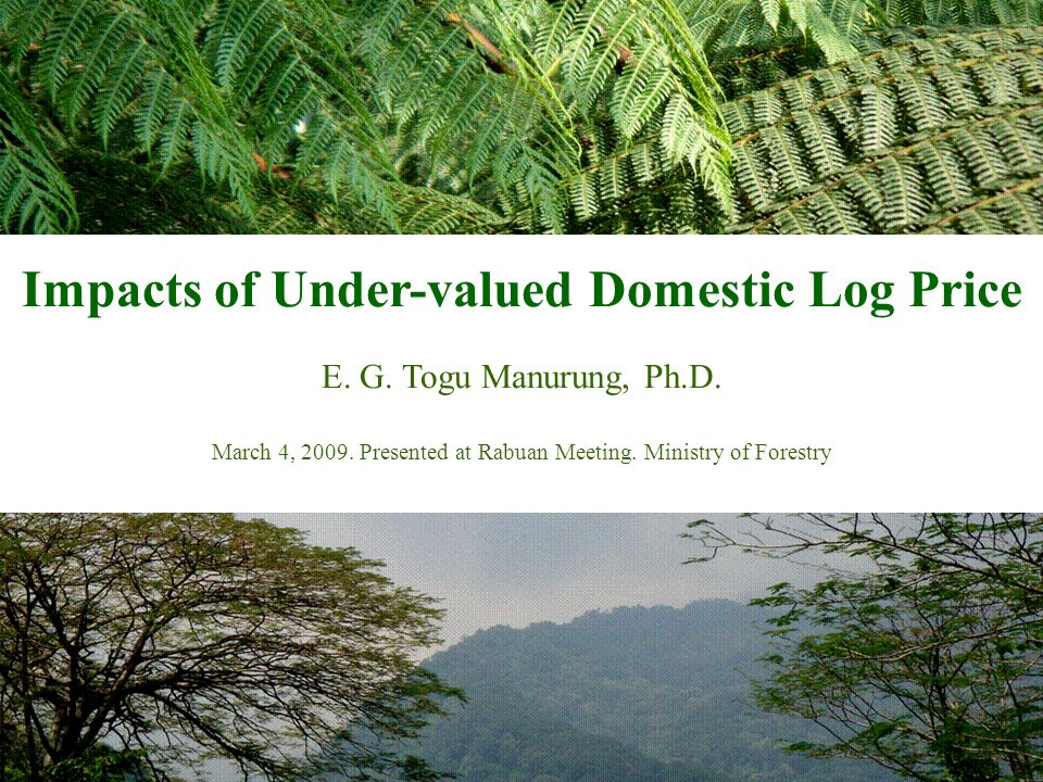 1 Impacts of Under-valued Domestic Log Price E. G. Togu Manurung, Ph.D. March 4, 2009. Presented at Rabuan Meeting. Ministry of Forestry