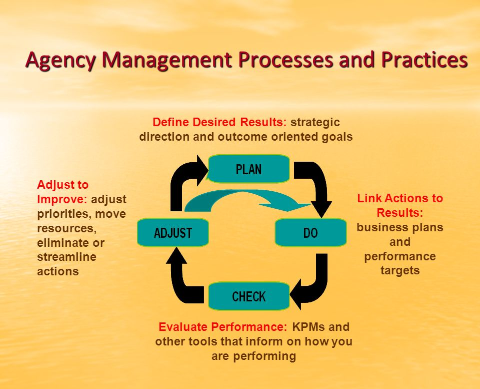 Agency Management Processes and Practices Define Desired Results: strategic direction and outcome oriented goals Link Actions to Results: business plans and performance targets Evaluate Performance: KPMs and other tools that inform on how you are performing Adjust to Improve: adjust priorities, move resources, eliminate or streamline actions