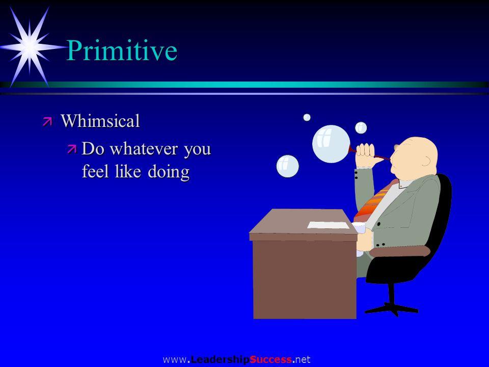 www.LeadershipSuccess.net Primitive ä Whimsical ä Do whatever you feel like doing