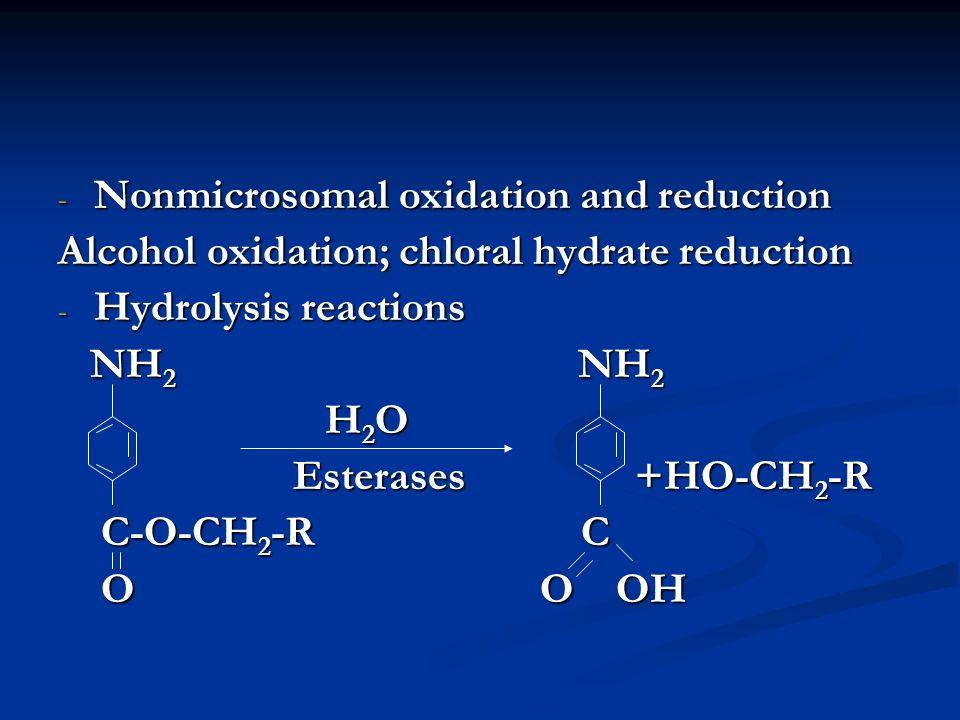 - Nonmicrosomal oxidation and reduction Alcohol oxidation; chloral hydrate reduction - Hydrolysis reactions NH 2 NH 2 NH 2 NH 2 H 2 O H 2 O Esterases