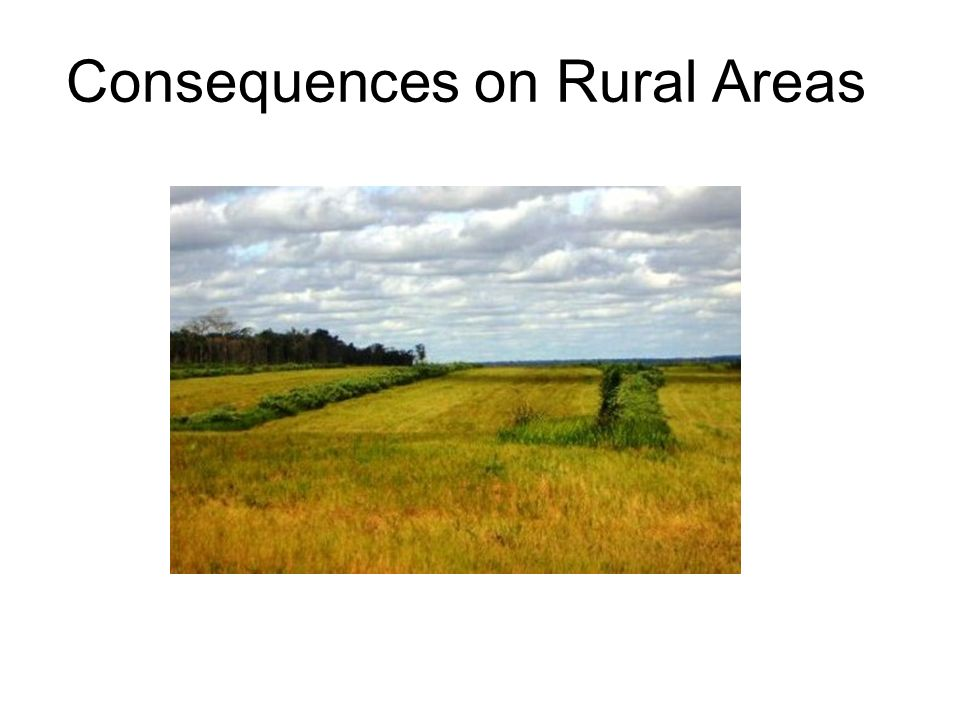Consequences on Rural Areas