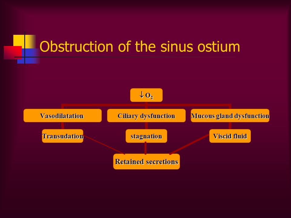 Obstruction of the sinus ostium Retained secretions