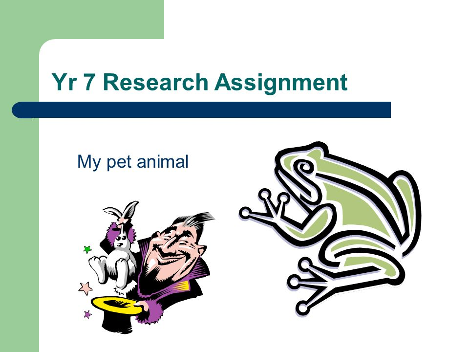 Yr 7 Research Assignment My pet animal