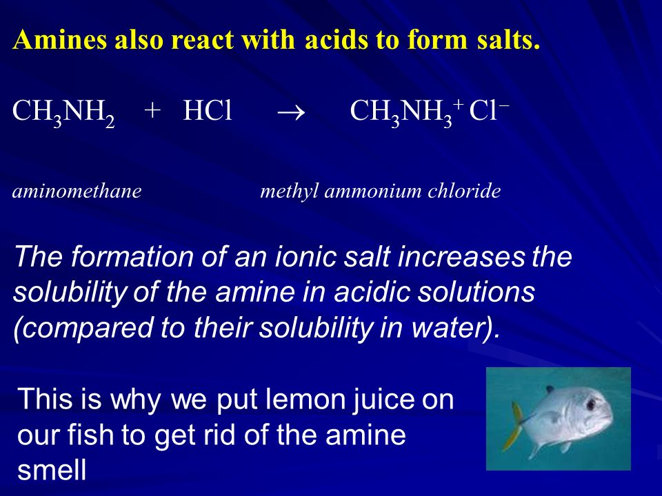 Amines also react with acids to form salts.