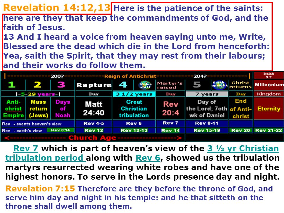 Rev 7 which is part of heavens view of the 3 ½ yr Christian tribulation period along with Rev 6, showed us the tribulation martyrs resurrected wearing