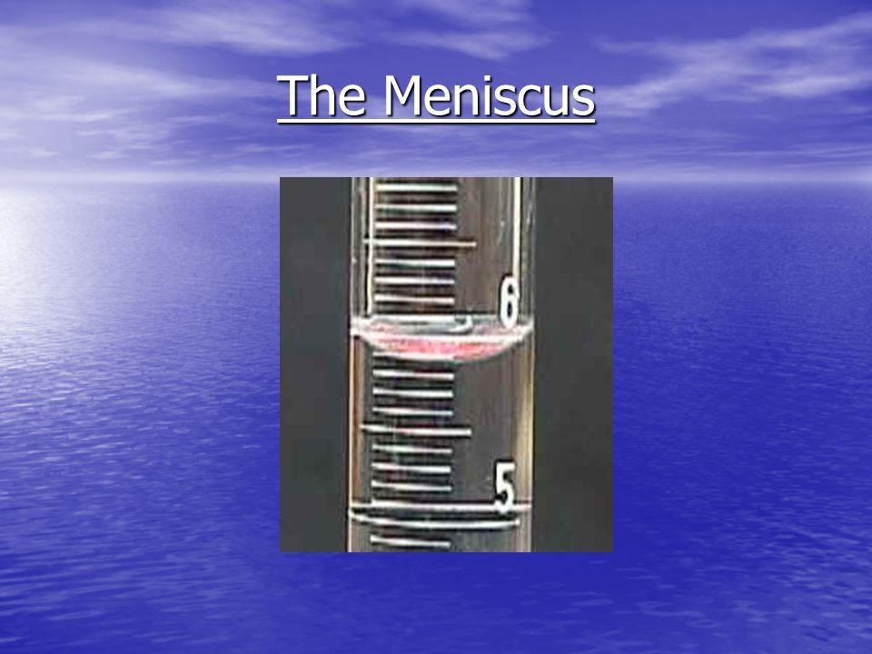 The Meniscus