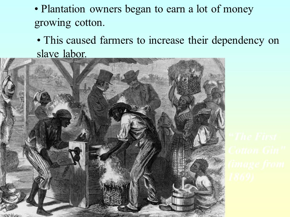 · Whitney never became wealthy from his invention. · Whitney applied for a patent on the cotton gin. · People ignored the patent and built their own.
