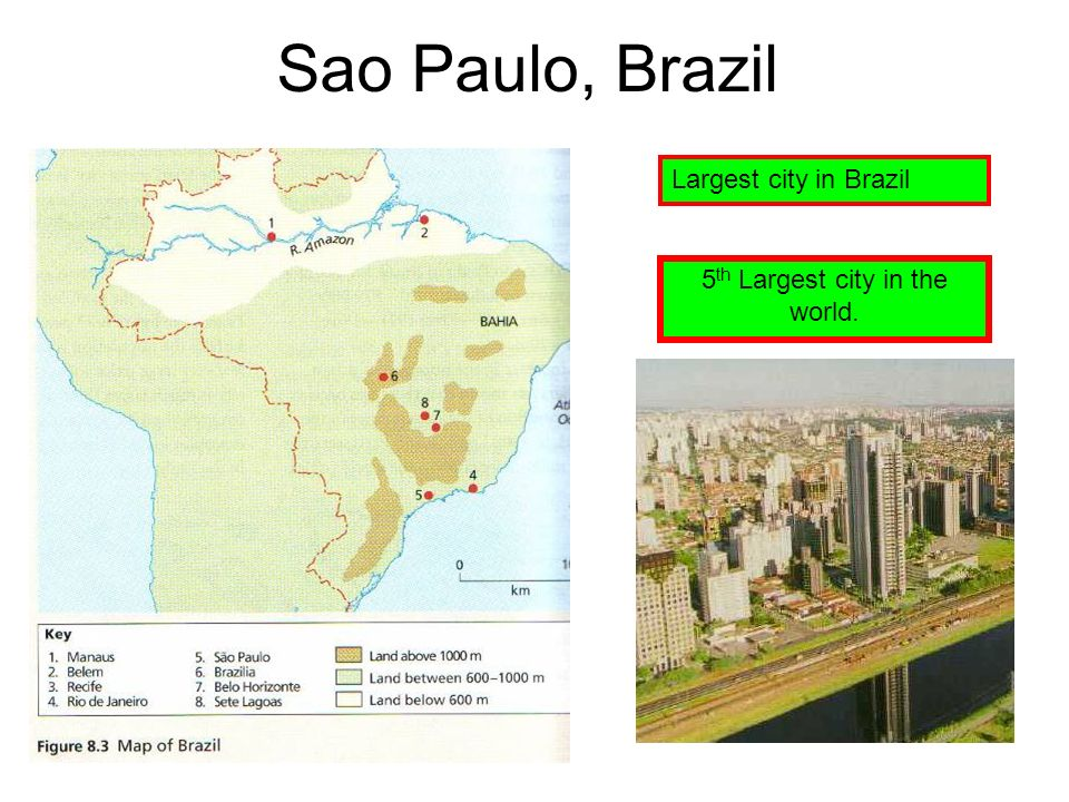 Sao Paulo, Brazil Largest city in Brazil 5 th Largest city in the world.