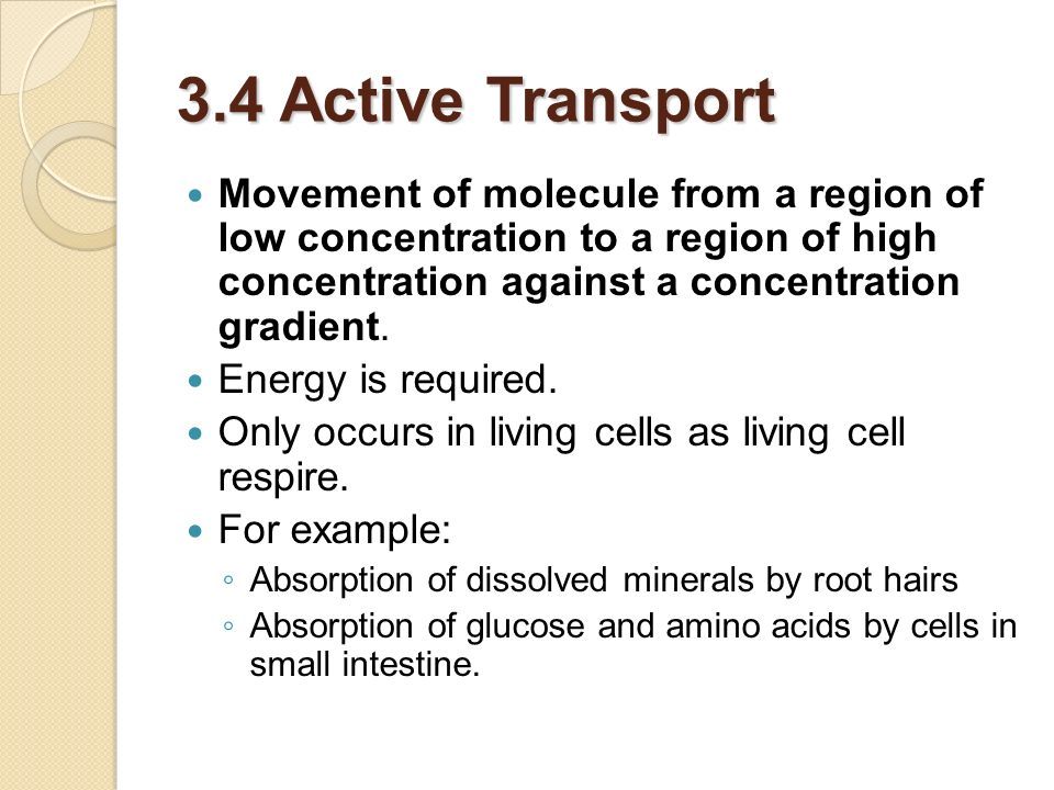 3.4 Active Transport Movement of molecule from a region of low concentration to a region of high concentration against a concentration gradient. Energ