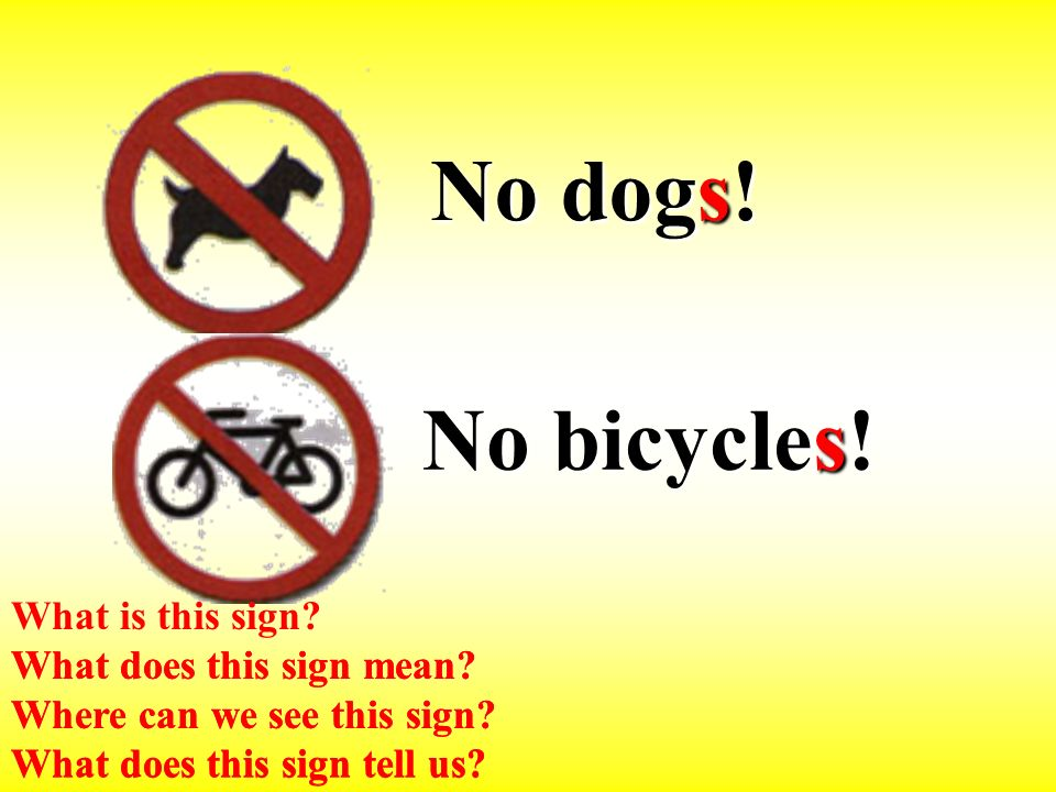 No bicycles. No dogs. What does this sign mean. Where can we see this sign.