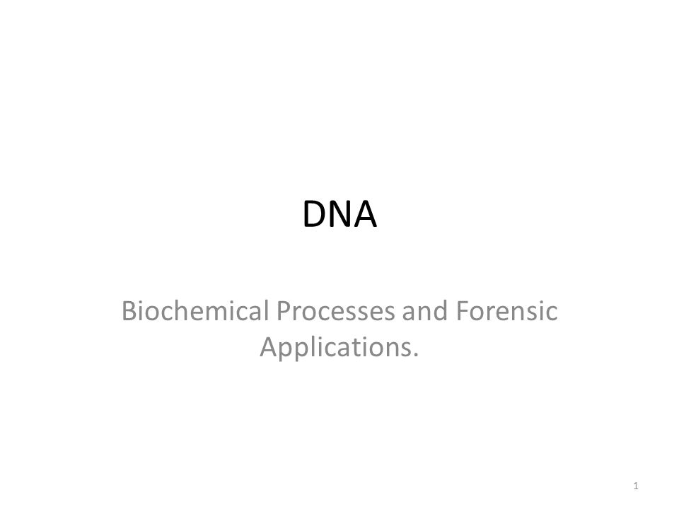 DNA Biochemical Processes and Forensic Applications. 1