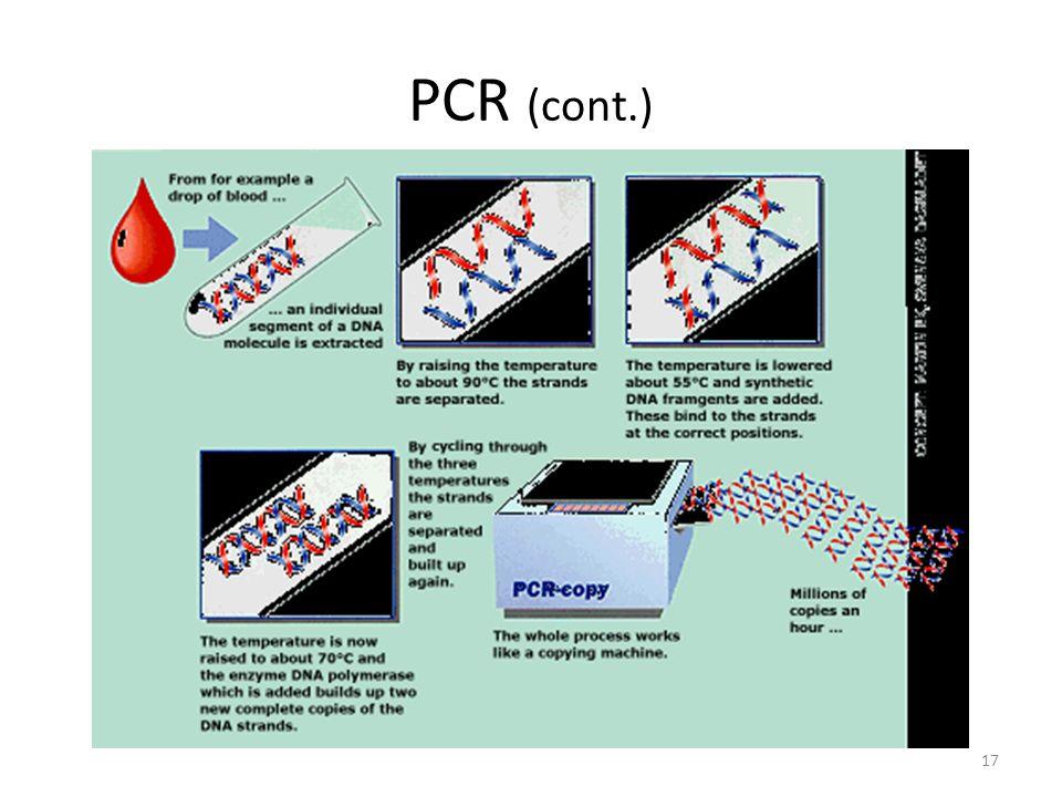 PCR (cont.) 17