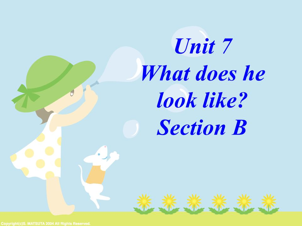 Unit 7 What does he look like? Section B