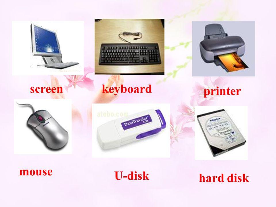 screenkeyboard printer mouse U-disk hard disk
