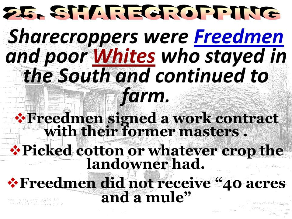 Sharecroppers were Freedmen and poor Whites who stayed in the South and continued to farm. Freedmen signed a work contract with their former masters.