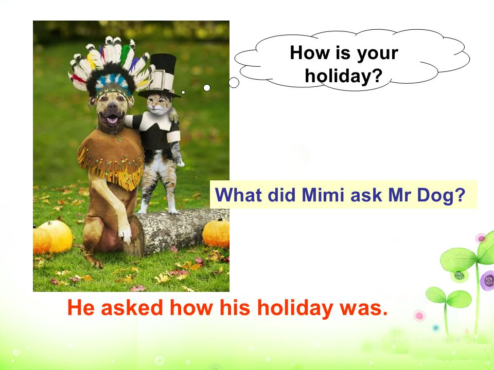 How is your holiday? What did Mimi ask Mr Dog? He asked how his holiday was.