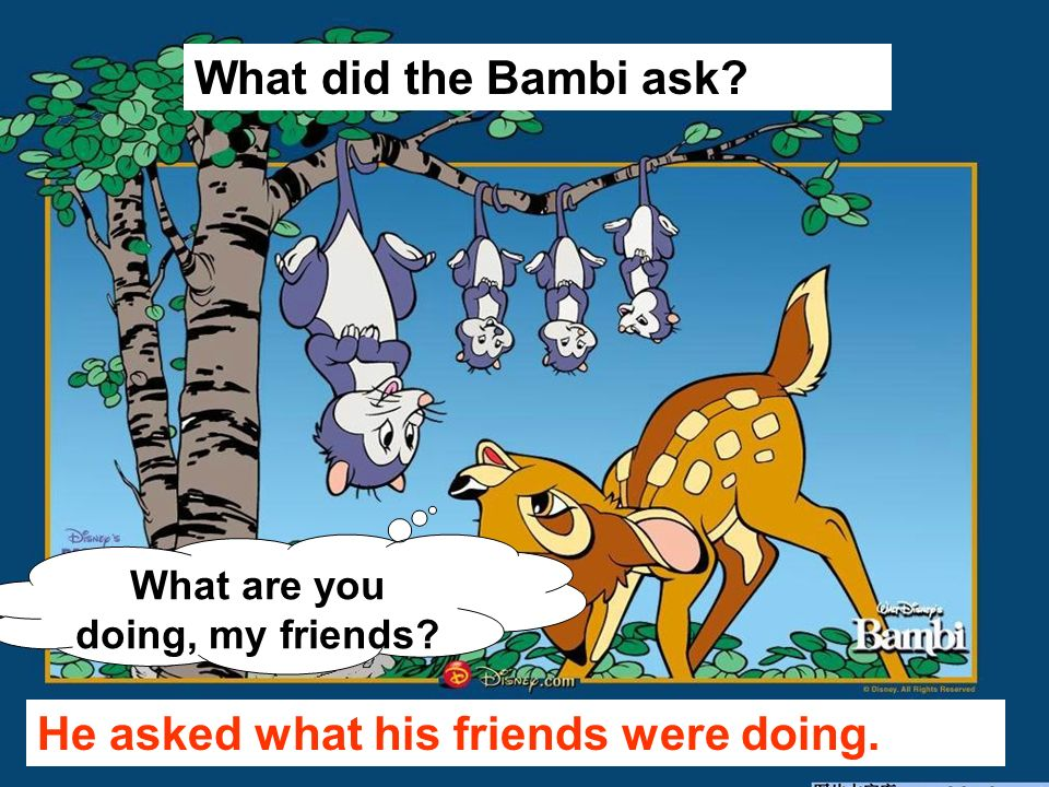 What are you doing, my friends? What did the Bambi ask? He asked what his friends were doing.