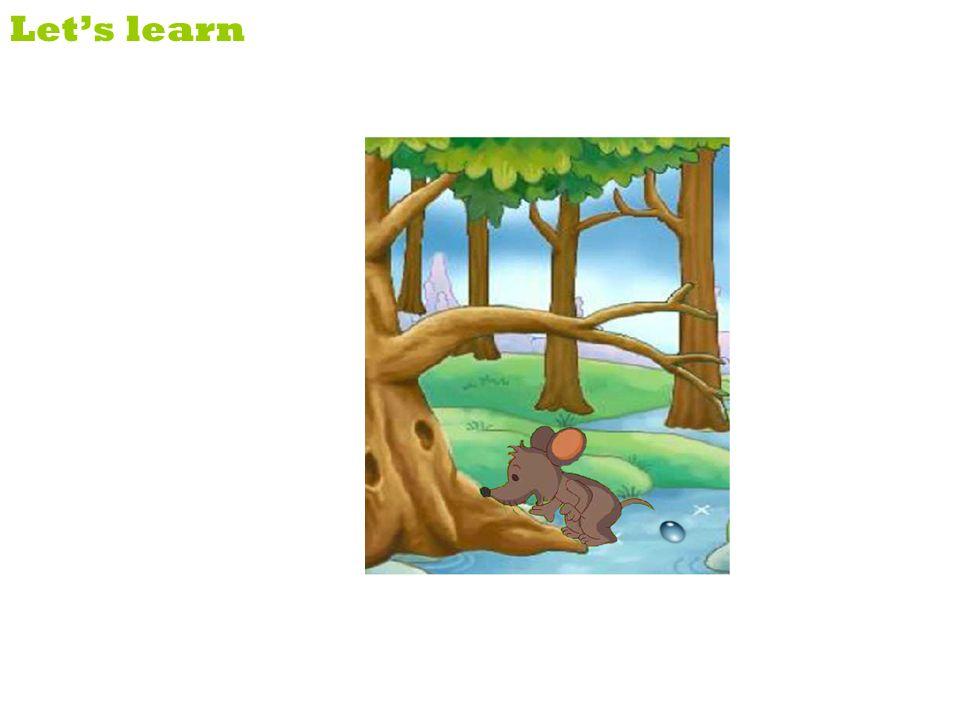 net in danger Lets learn The lion is in the net. He is in danger.