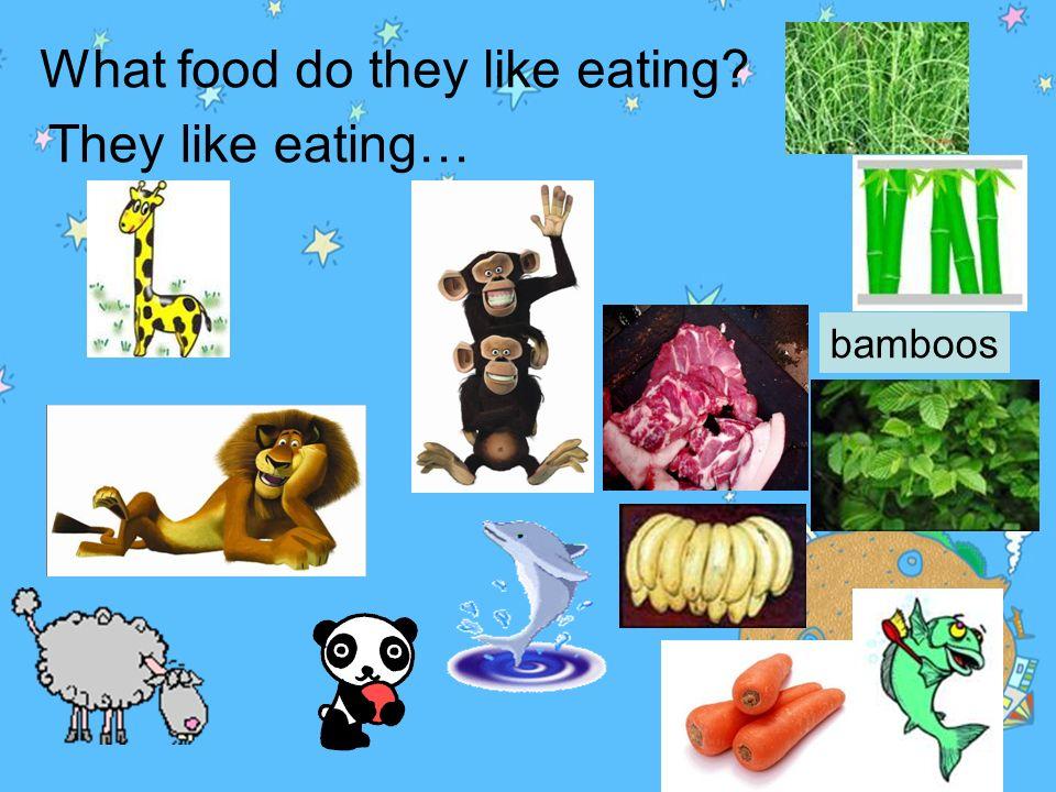 1.What animals can swim? 2. What animals eat grass? 3. What animals eat meat? 4. What animals eat leaves?