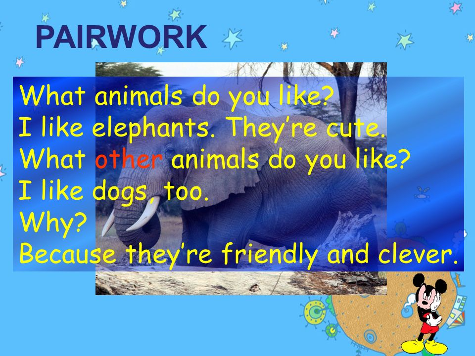Listen. What words do they use to describe the animals? AnimalMarias wordsTonys words elephants pandas interesting; clever beautiful; shy ugly cute