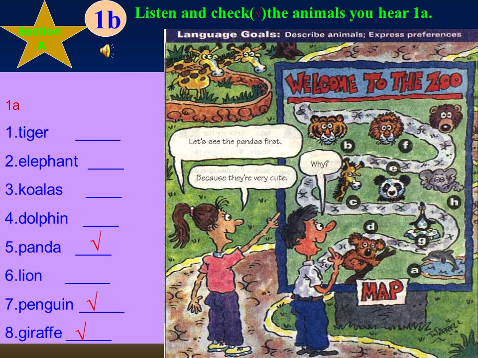Section A Unit3Why do you like koalas? Match the words with the animals in the picture. 1.tiger _____ 2.elephant ____ 3.koalas ____ 4.dolphin ____ 5.p