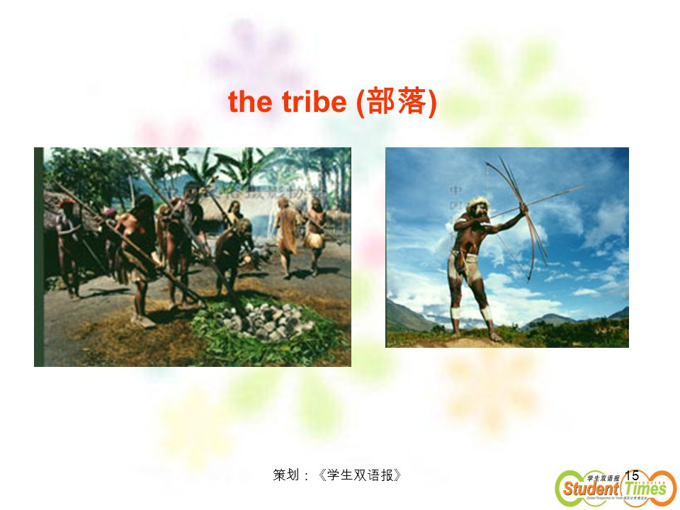 15 the tribe ( )