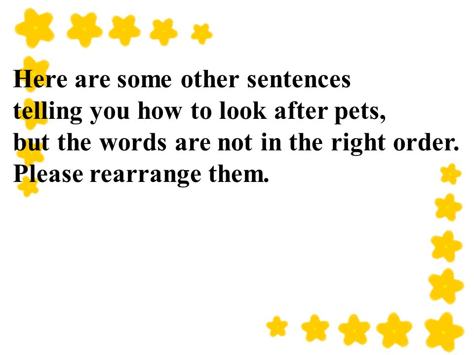 Here are some other sentences telling you how to look after pets, but the words are not in the right order.