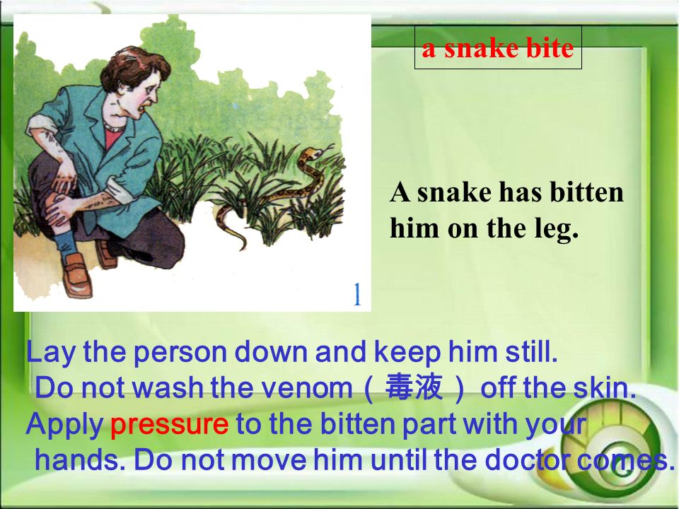 A snake has bitten him on the leg. Lay the person down and keep him still. Do not wash the venom off the skin. Apply pressure to the bitten part with