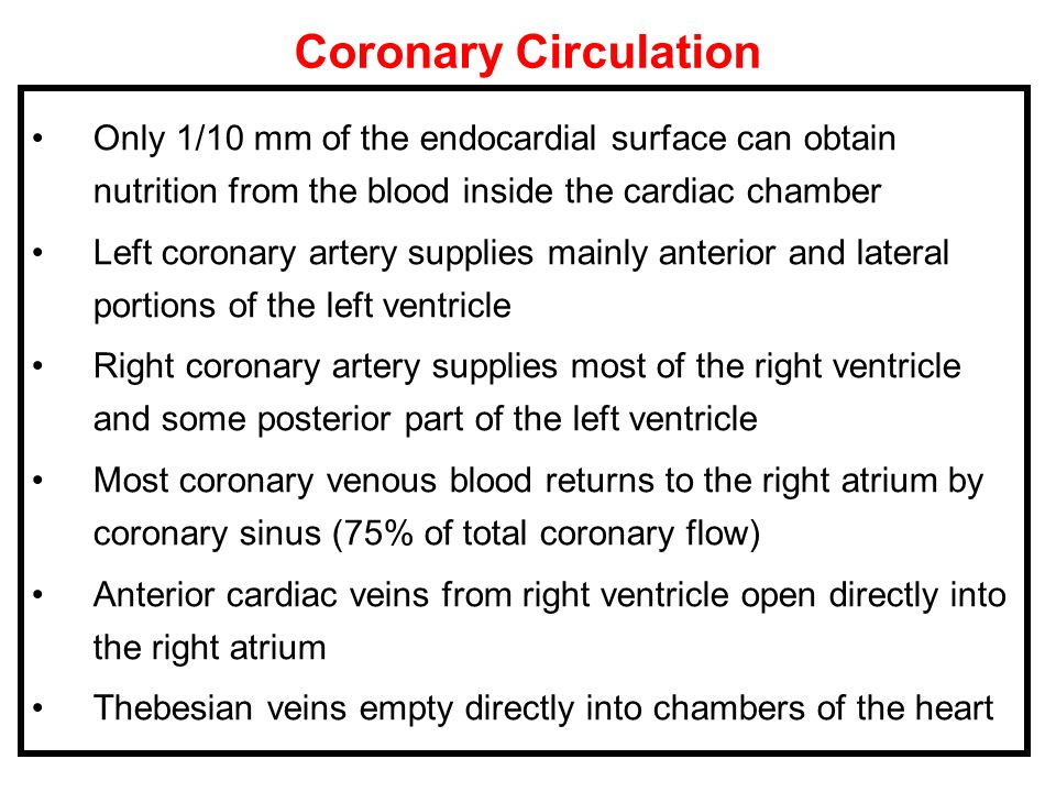 Coronary Circulation Only 1/10 mm of the endocardial surface can obtain nutrition from the blood inside the cardiac chamber Left coronary artery suppl