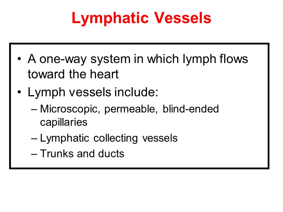 Lymphatic Vessels A one-way system in which lymph flows toward the heart Lymph vessels include: –Microscopic, permeable, blind-ended capillaries –Lymp