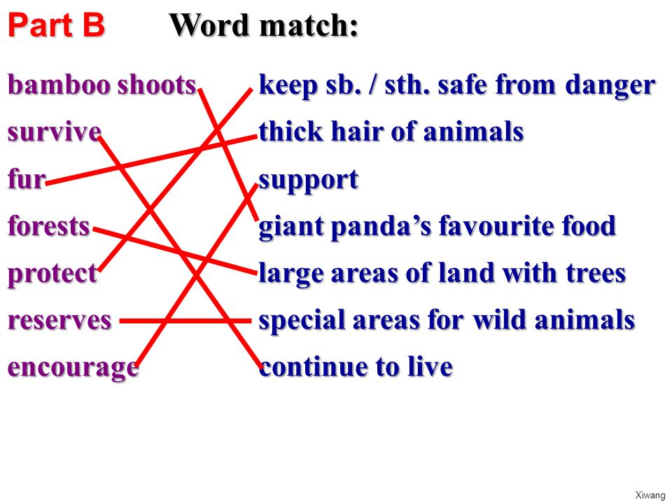 Word match: bamboo shoots survivefurforestsprotectreservesencourage keep sb.