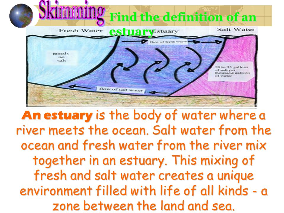 Find the definition of an estuary An estuary is the body of water where a river meets the ocean. Salt water from the ocean and fresh water from the ri