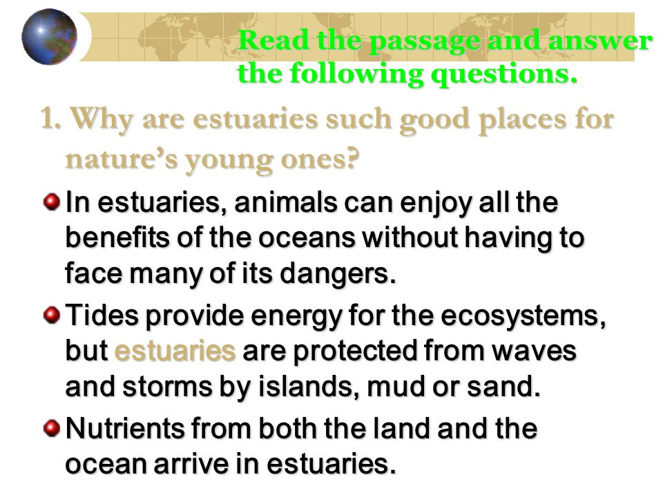 1. Why are estuaries such good places for natures young ones? In estuaries, animals can enjoy all the benefits of the oceans without having to face ma
