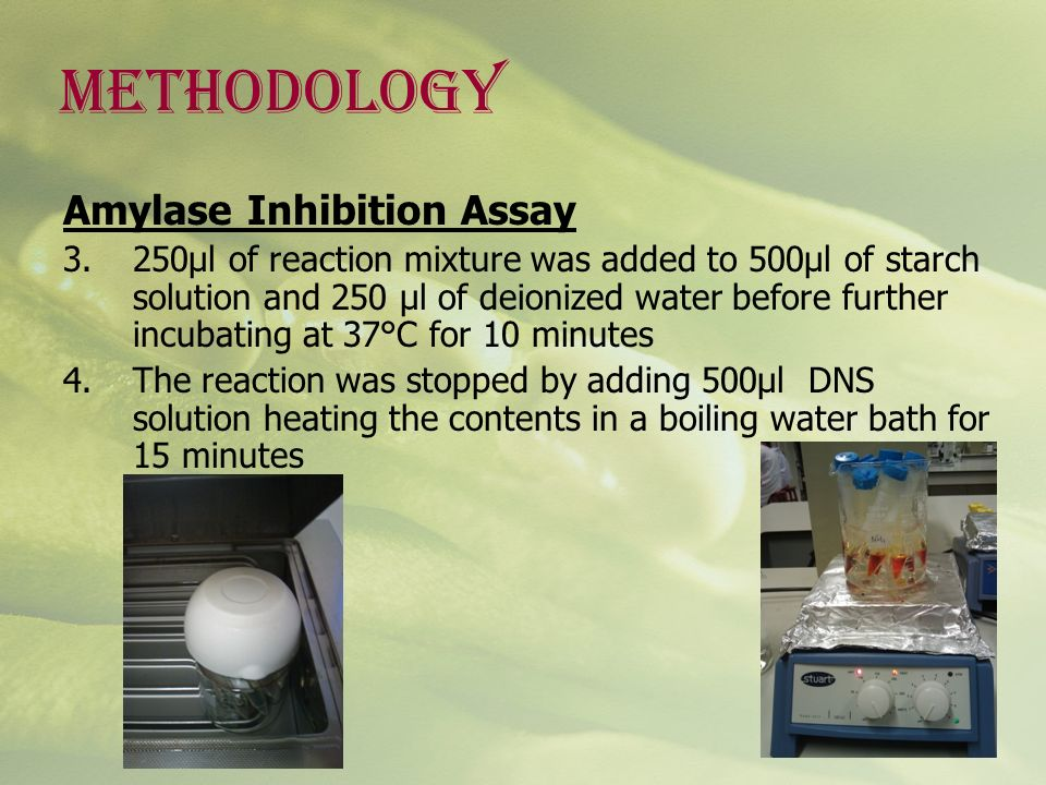 METHODOLOGY Amylase Inhibition Assay 3.250µl of reaction mixture was added to 500µl of starch solution and 250 µl of deionized water before further in