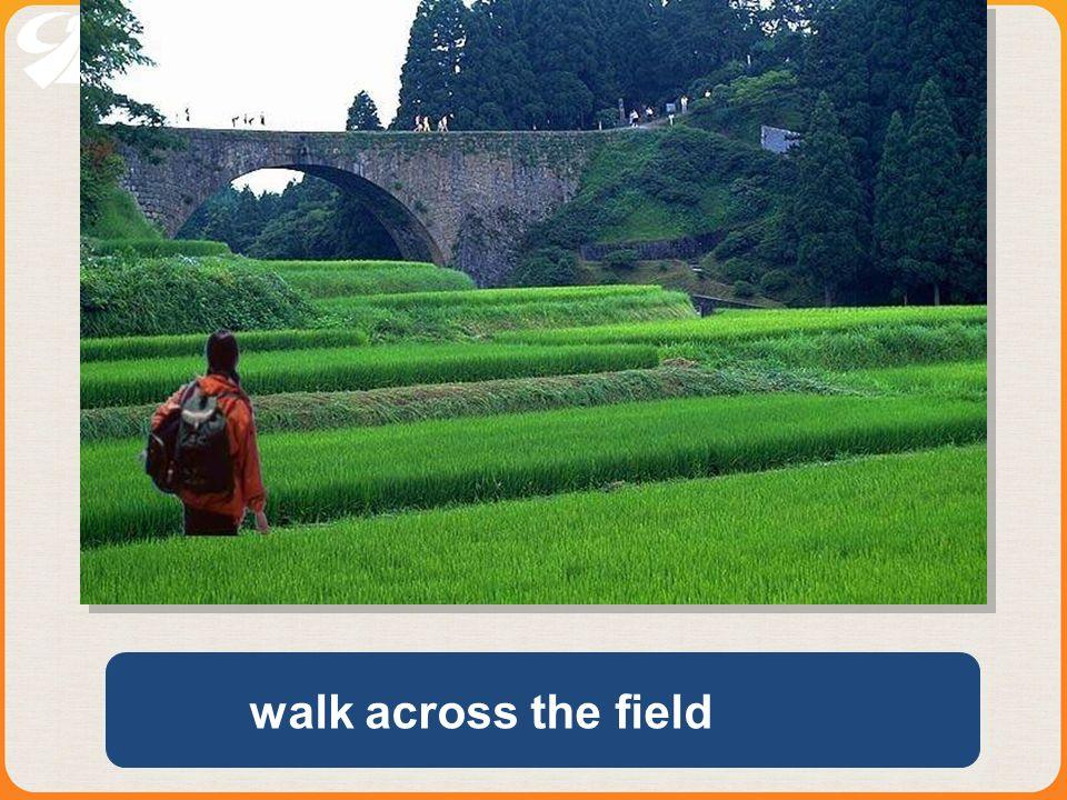 walk across the field