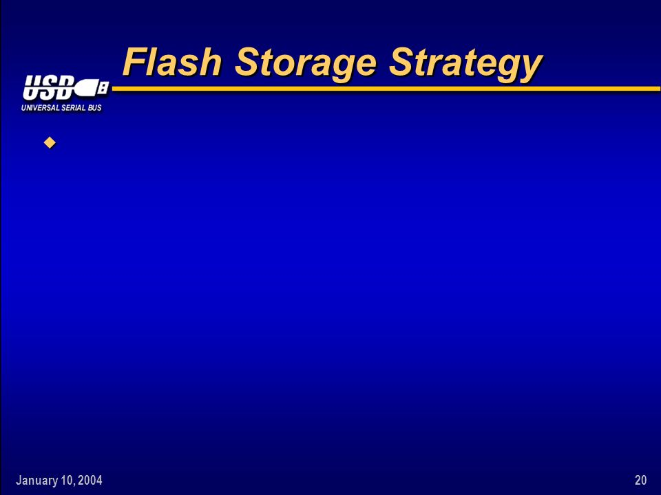 January 10, 200420 Flash Storage Strategy w