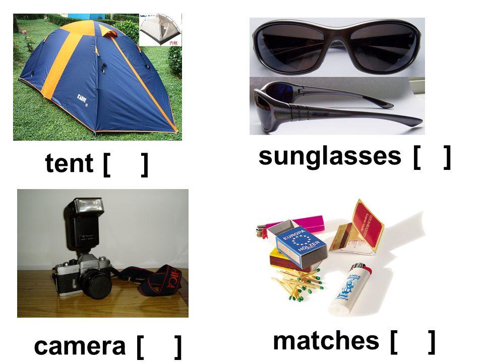 tent [ ] sunglasses [ ] matches [ ] camera [ ]