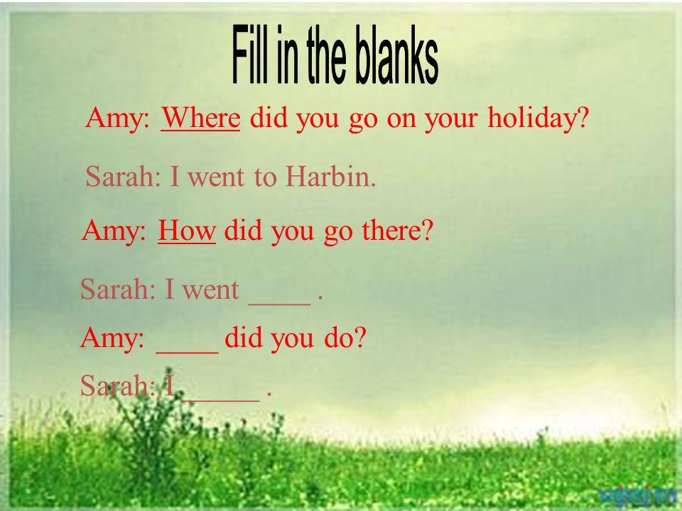 Amy: Where did you go on your holiday? Sarah: I went to Harbin. Amy: How did you go there? Sarah: I went ____. Amy: ____ did you do? Sarah: I _____.