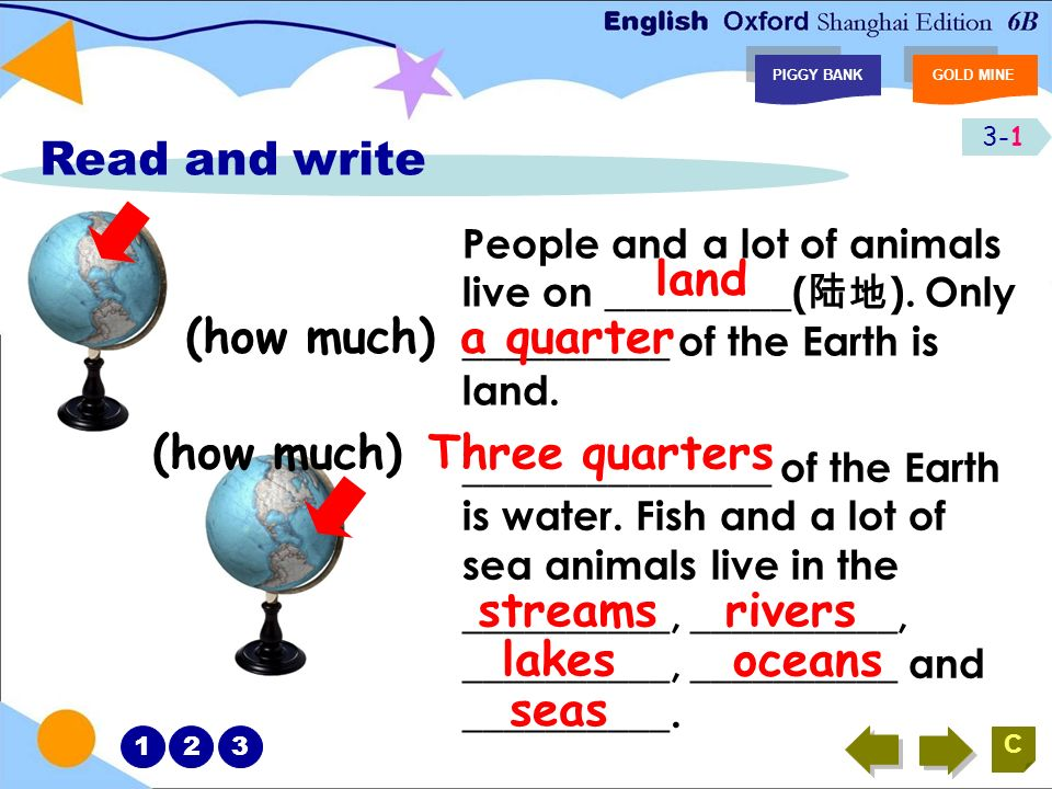 8-8 PIGGY BANKGOLD MINE C What animals can we find in the sea? starfishsea horse beautiful 12345678