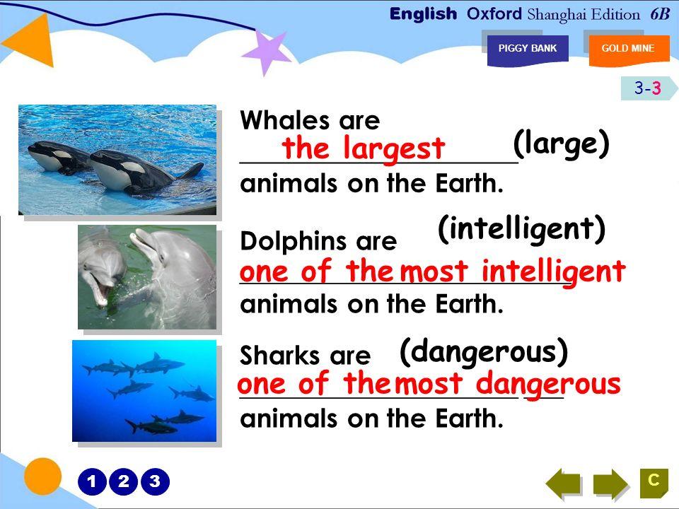 3-2 PIGGY BANKGOLD MINE 123 It is a wonderful world under the water.