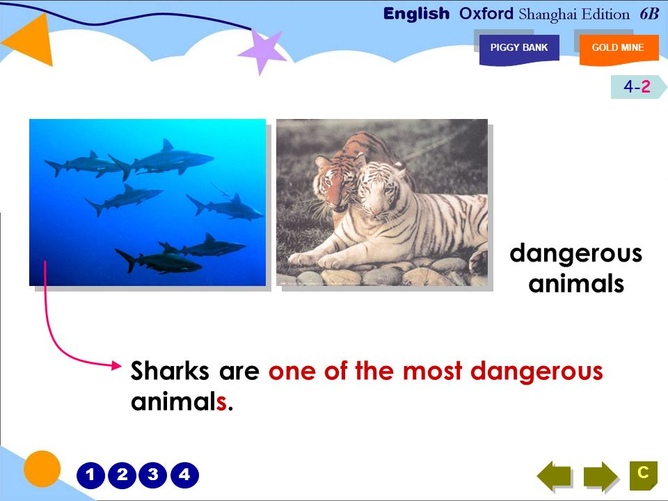 8-5 PIGGY BANKGOLD MINE C What animals can we find in the sea? shark dangerous 12345678
