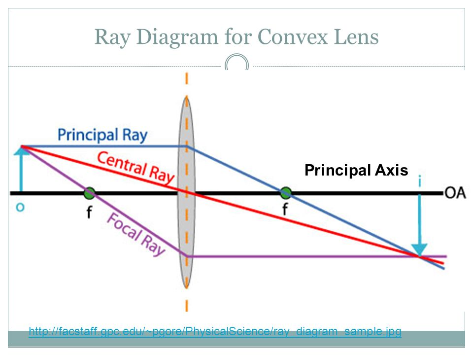 Ray Diagram for Convex Lens Principal Axis http://facstaff.gpc.edu/~pgore/PhysicalScience/ray_diagram_sample.jpg
