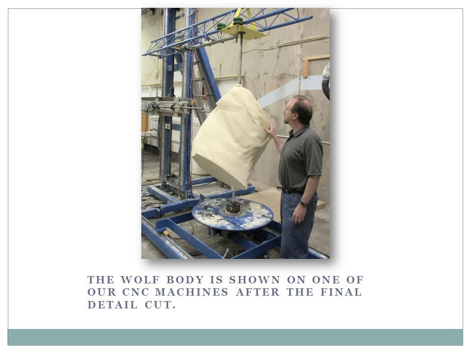 THE WOLF BODY IS SHOWN ON ONE OF OUR CNC MACHINES AFTER THE FINAL DETAIL CUT.