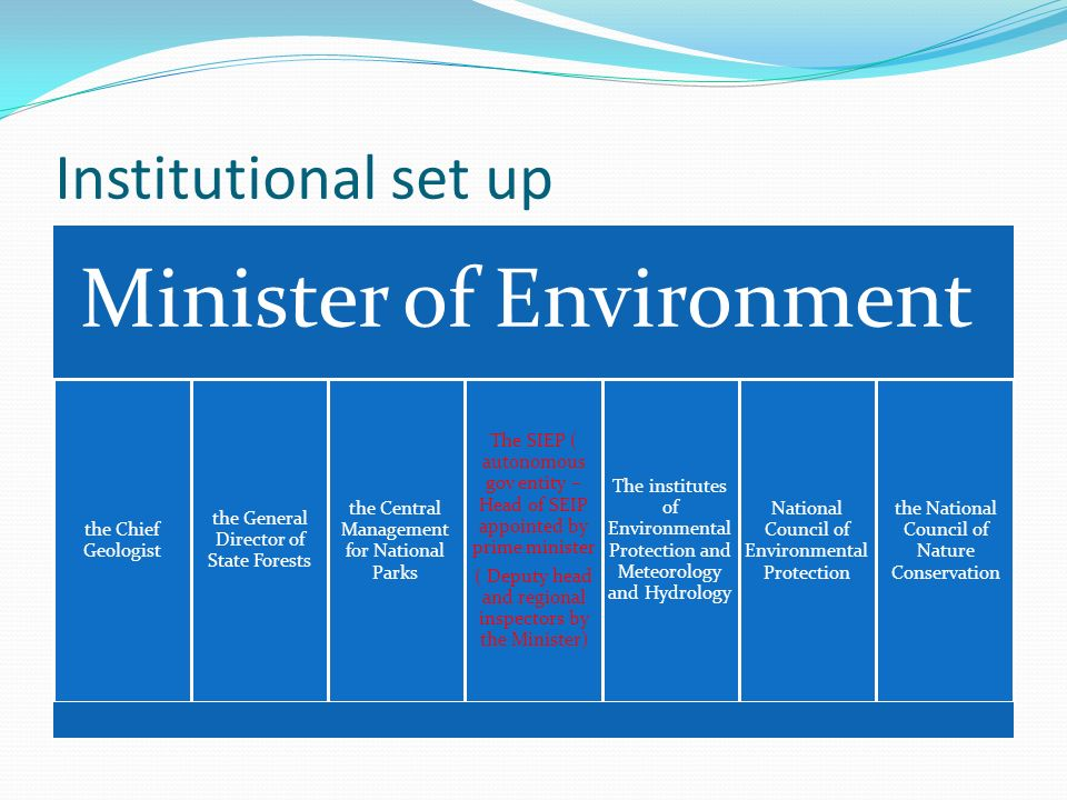 Institutional set up Minister of Environment the Chief Geologist the General Director of State Forests the Central Management for National Parks The S