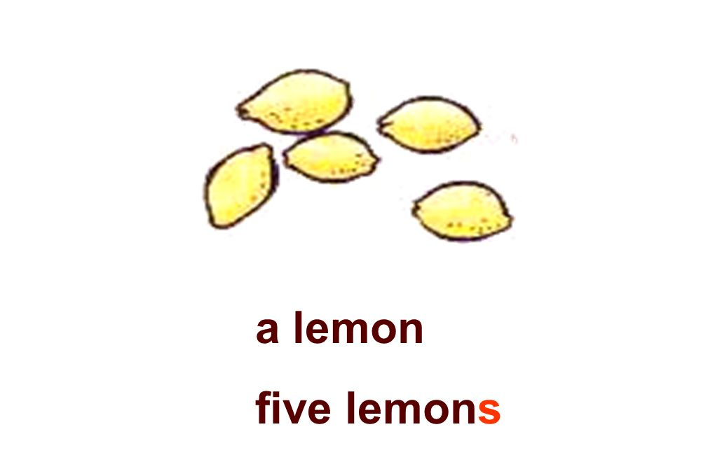 a lemon five lemons
