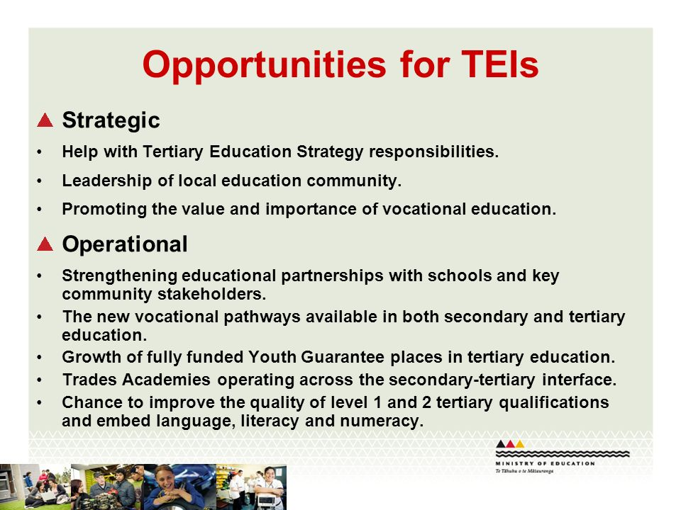 Opportunities for TEIs Strategic Help with Tertiary Education Strategy responsibilities.