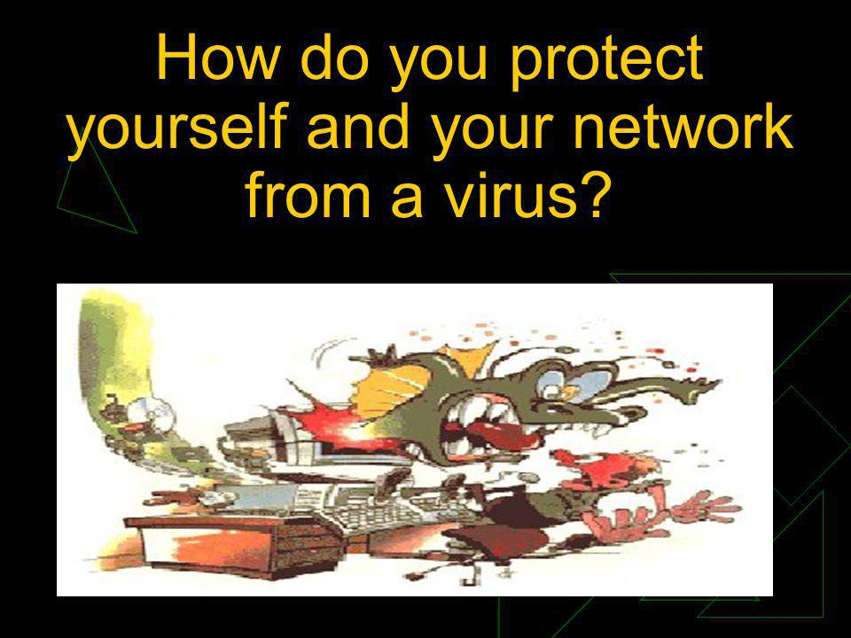 How do you protect yourself and your network from a virus?