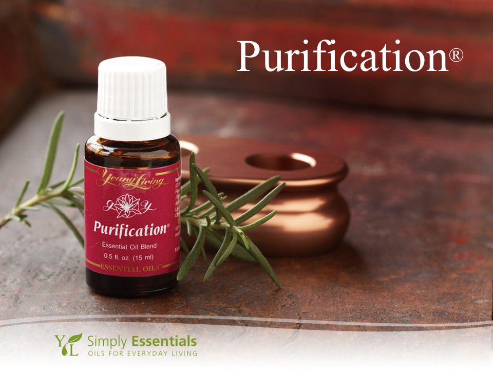 Purification ®
