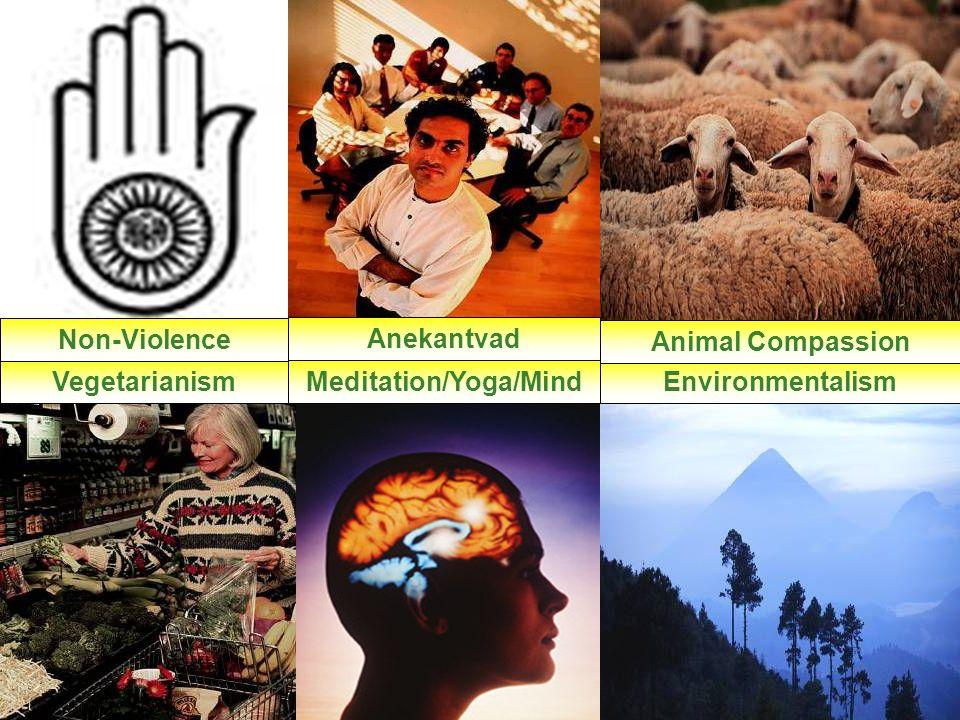3 VegetarianismMeditation/Yoga/MindEnvironmentalism Animal CompassionAnekantvad Non-Violence VegetarianismMeditation/Yoga/MindEnvironmentalism Animal Compassion Anekantvad Non-Violence